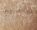 JamesOssuaryInscription-1-.jpg