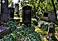 Jan Scheinost Břevnovský hřbitov.jpg