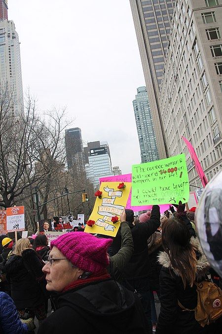 January 2019 Women's Alliance march in NYC (46806303131).jpg