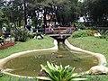 Jardim Botânico - Curitiba PR - panoramio (5).jpg