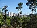 Jardim Zoológico de Lisboa - Portugal (868408049).jpg