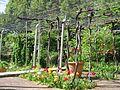 Jardin Treille Villette Mai 2016 033.JPG