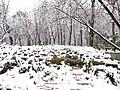 Jardines del Buen Retiro (Madrid) 26.jpg