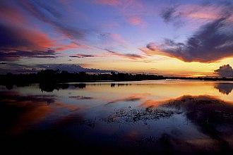 Jaú National Park - Image: Jau National Park