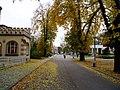Jeseň na Beethovenovej ulici - panoramio.jpg