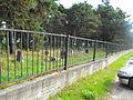 Jewish cemetery in Rakov 1j.jpg