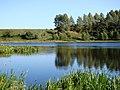 Jezioro Sumowo przy wpływie Rospudy - panoramio.jpg