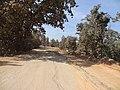 Jharkhand road to simdega, ranchi from rourkela - panoramio (1).jpg