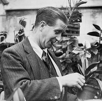 Johnny Douglas - Douglas with his orchids at home in Theydon Bois, Essex, 1926