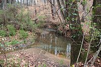 Johns Creek in Forsyth County, Mar 2017.jpg