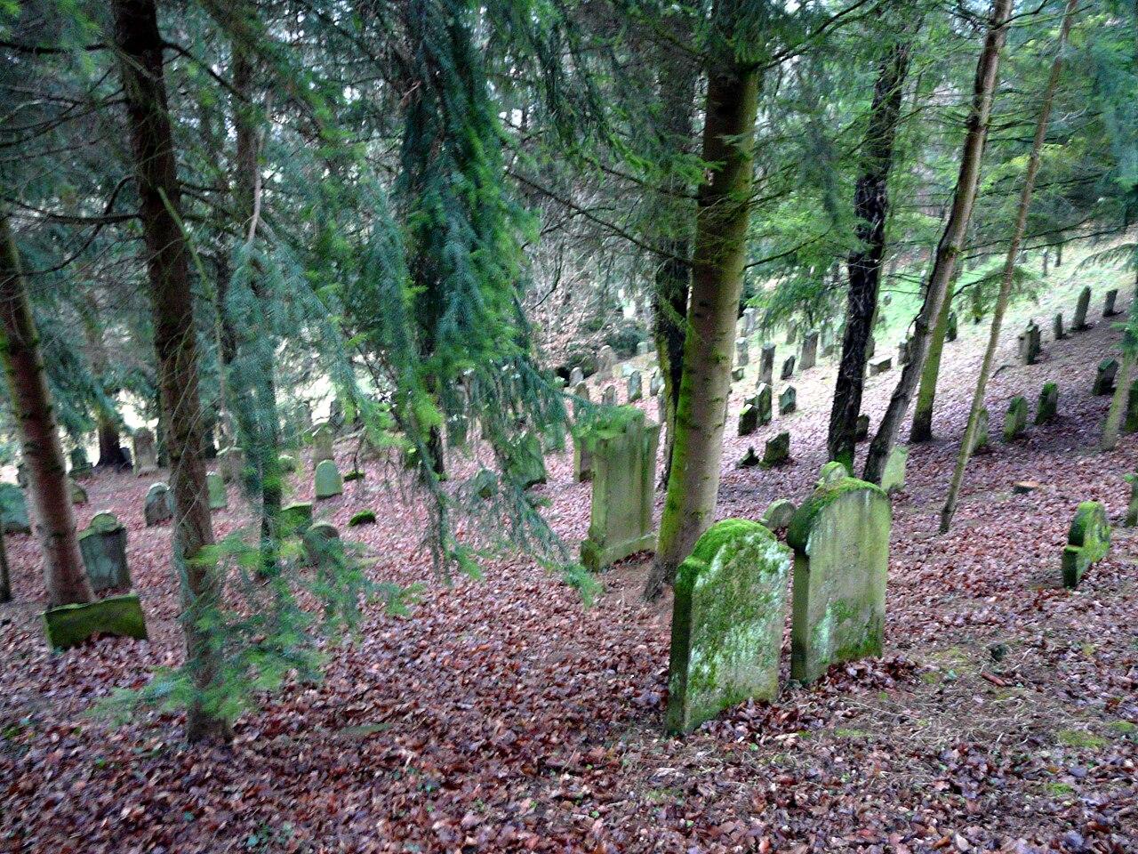 Juedischer Friedhof Oberoewisheim 03 fcm.jpg