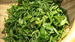 Jungjak tea leaves.png