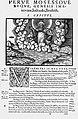 Jurij Dalmatin - prevod prve Mojzesove knjige (Geneza, Genesis).JPG