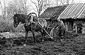 Kündmine Saaremaal 74 (3).jpg