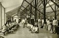 KITLV - 78330 - Kleingrothe, C.J. - Medan - Coolies sorting tobacco in a barn of the Amsterdam Deli Company in Medan, Sumatra - circa 1900.tif