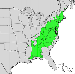 Kalmia latifolia map.png