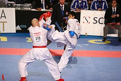 کاراته چند سبک اصلی دارد - سرگرمی