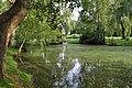 Kelkheim, Mühlgrundpark, Weiher.JPG