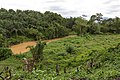 Kimanis Sabah Colony-Ellena-08.jpg