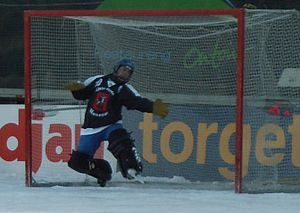 Dynamo Moscow Bandy Club - The goalkeeper Kirill Khvalko