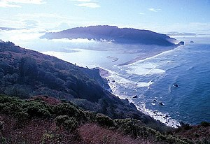 Biomass (ecology) - Image: Klamath river estuary