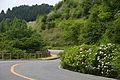 Kobe Oku-maya Driveway02n4272.jpg