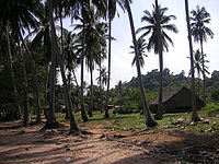 Koh Tonsay 1.jpg
