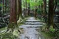 Kozanji Kyoto Kyoto07s5s4592.jpg