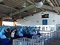 Kraken at SeaWorld Orlando 7.jpg