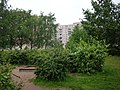 Krasnoselskiy rayon, Sankt-Peterburg, Russia - panoramio - Владимир Парамонов (1).jpg