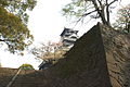 Kumamoto castle 熊本城 (458750450).jpg
