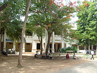 campus of a college with shaded trees