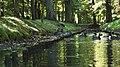 Kwaczuszki na Brochowie, 2.jpg