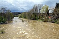 L'Yonne en crue à Merry sur Yonne PDSC 0238.jpg