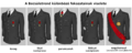 Légiond'HonneurGrades-HU.png