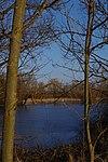 LSG H 00070 Calenberger Leinetal - Teich an der Calenburg (9).jpg