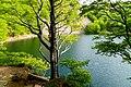 Lago Santo parmense.jpg