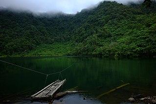 Mindanao montane rain forests
