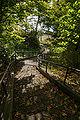 Lake Shikotsu44n4272.jpg