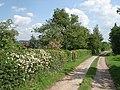 Lane to Park Farm - geograph.org.uk - 456684.jpg