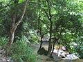 Lantau peak 4.JPG