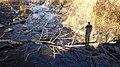 Le ruisseau - panoramio.jpg