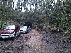 Lea Bailey Light Railway — Hawthorns Tunnel (12348354185).jpg