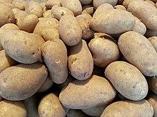 Annabelle Kartoffel