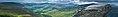 Leinster banner.jpg