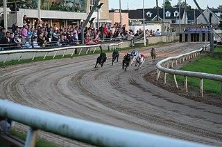 Mullingar Greyhound Stadium Sporting facility in County Westmeath, Ireland