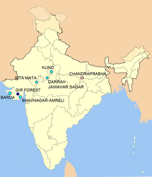 Species reintroduction - Lion reintroduction sites in India