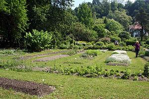 Ljubljana Botanical Garden - Image: Ljubljana Botanic Garden plant system