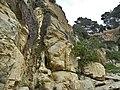 Lloret de Mar - panoramio (80).jpg