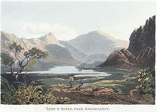 Llyn-Y-Dinas, near Bedgellert